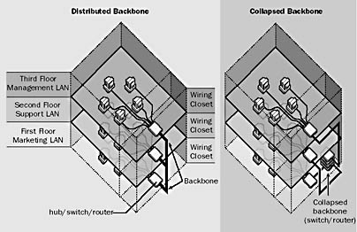 Two types of backbone: distributed and collapsed